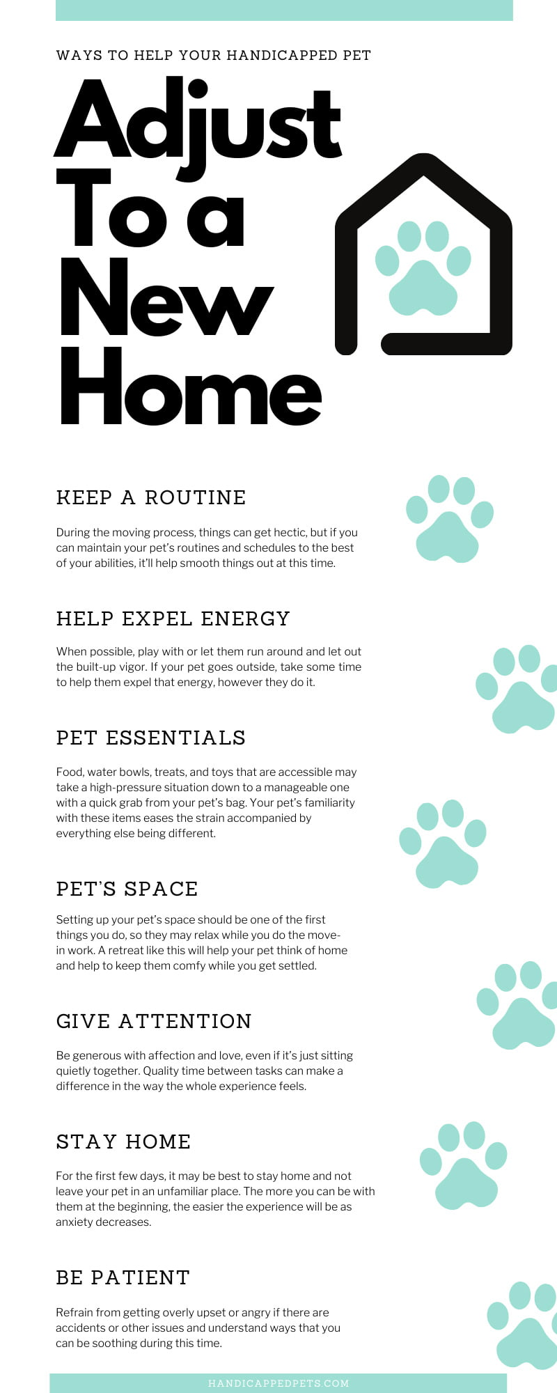 Ways To Help Your Handicapped Pet Adjust To a New Home