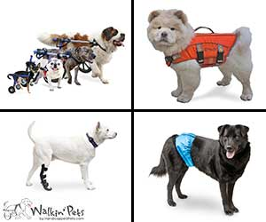 All Walkin' Pets Products by Walkinpets.com
