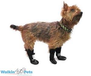 Walkin' Pet Boots