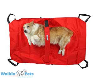 Pet Transport Stretcher