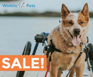 Walkin' Pets Products On Sale