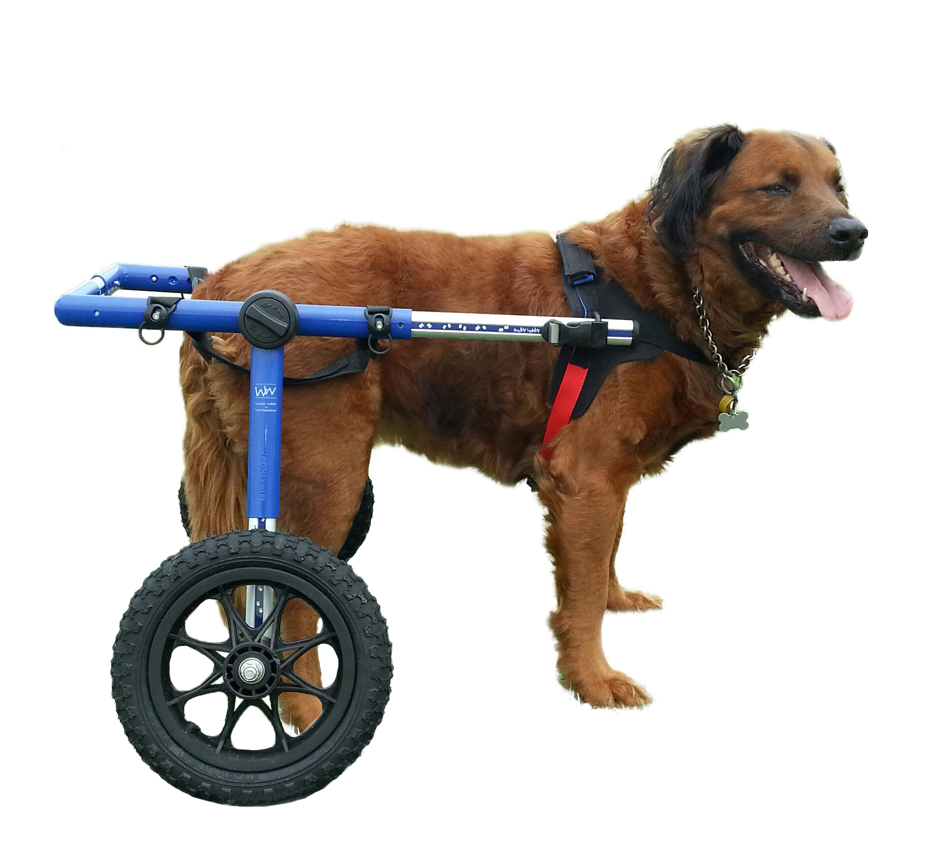 Dog Wheelchair - For Large Dogs 70-180 lbs