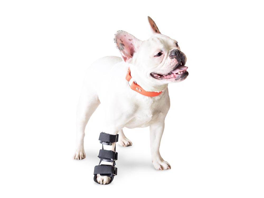 Walkin' Pet Splint for Dogs, Canine Front Leg