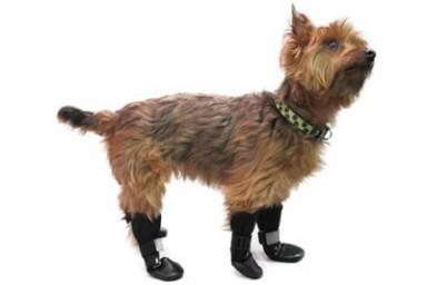 Walkin' Dog Boots, Set of 4