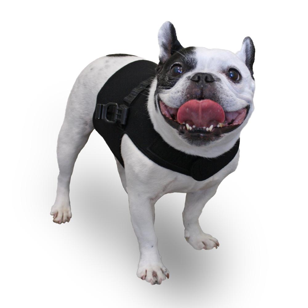 Walkin' Front Dog Vest Large
