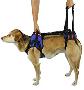 smudge combo harness