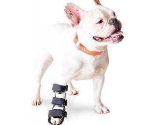 Walkin' Front Splint