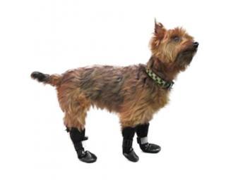Walkin' Dog Boots