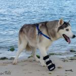 Toka in Front Splint