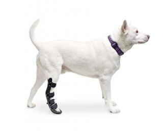 Walkin' Rear Splint