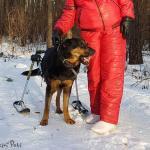 Oksana-Blackcat in Skis