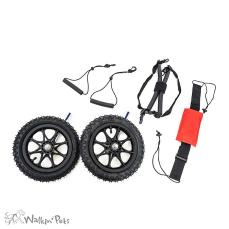 Air Filled Tire Kits