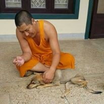 A full grown Tashi and one of the monks in India