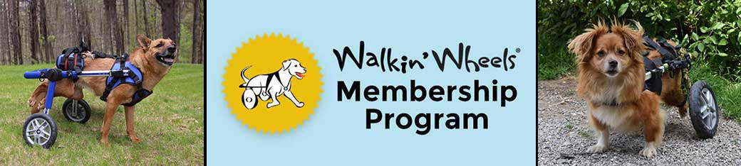 5-Year All-Inclusive Walkin' Wheels Membership Program