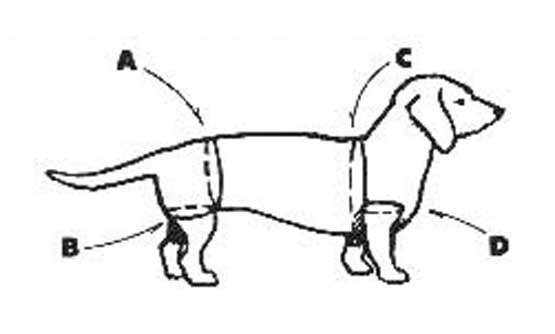 Walkabout Front & Rear Combo Measurement