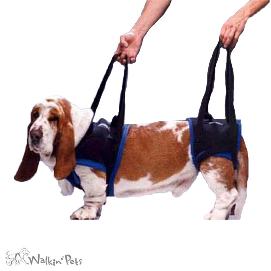 Lift and ist Harness | Walkabout | HandicappedPets