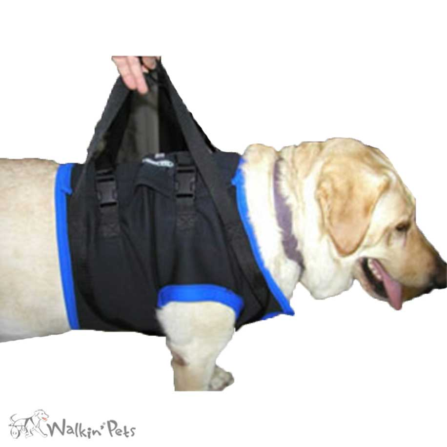 Walkabout Front Harness