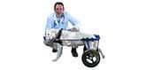 vet recommended dog wheelchair