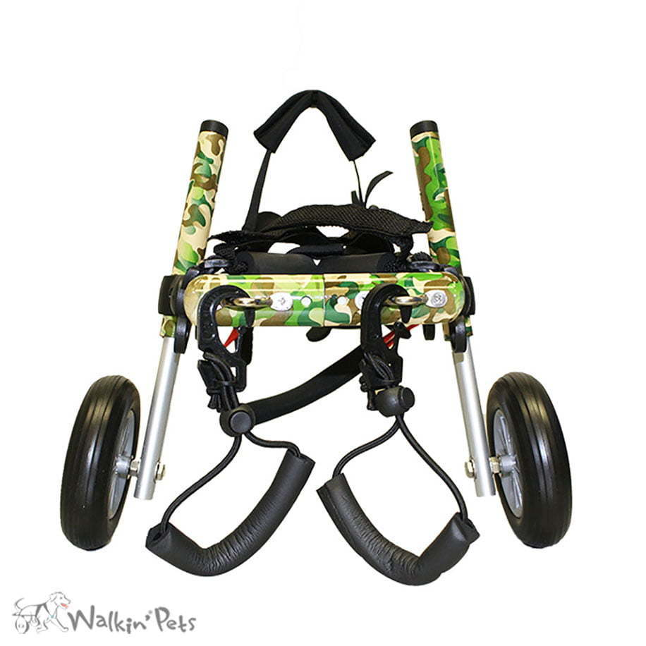 Dog Wheelchairs For Dachshunds Other Small Dogs