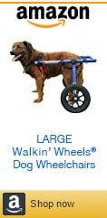 Large Amazon Dog Wheelchair