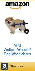 Mini Amazon Dog Wheelchair