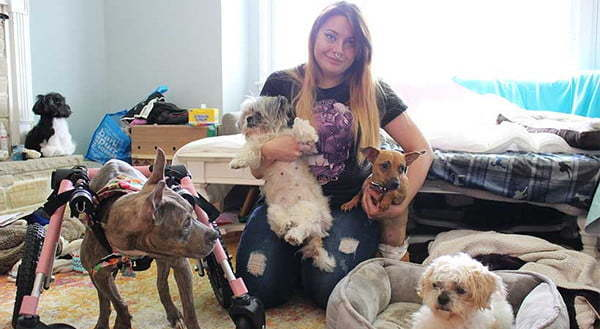 Foster Family and Disabled Dogs