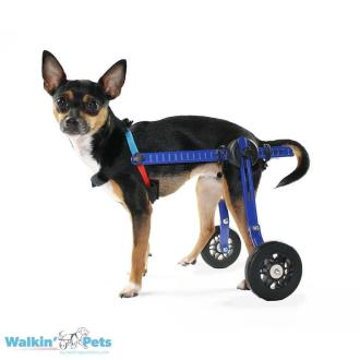 Walkin' Wheels MINI Dog Wheelchair