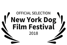 New York Dog Film Festival