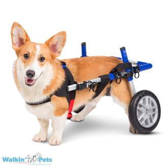 Walkin' Wheels CORGI Dog Wheelchair