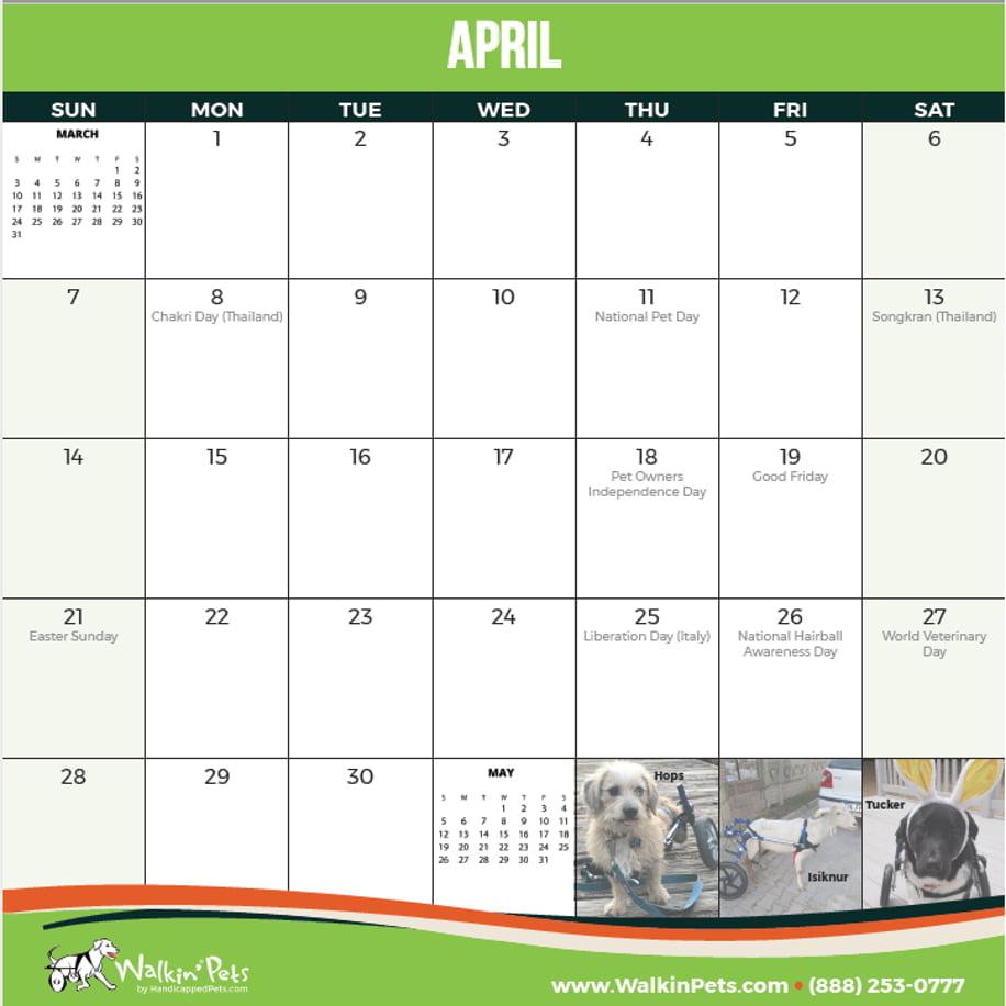 2019 Calenar: 2019 Walkin' Pets Calendar