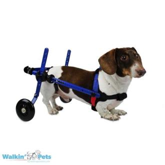 Walkin' Wheels DACHSHUND Wheelchair