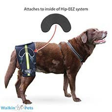 Walkin' Hip-EEZ Bridge Attachment