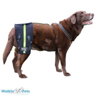 Walkin' Hip-EEZ Support System Roze