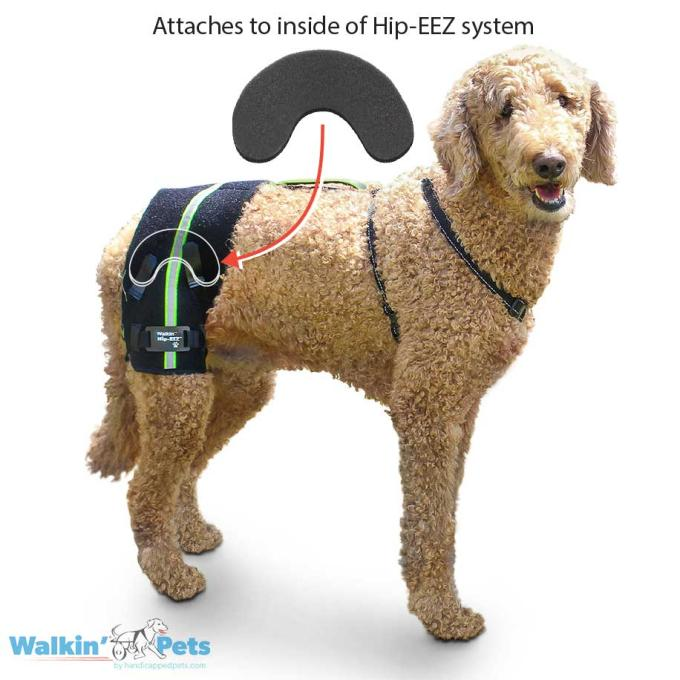 Hip subluxation solution for dogs