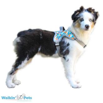 Tucker Walkin' Warrior Harness