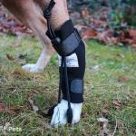 Rear No-Knuckling Training Sock