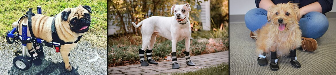 Walkin' Pet Boots for Dogs and Cats